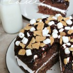 S'mores Cake