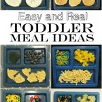 Easy {and Real} Toddler Meal Ideas