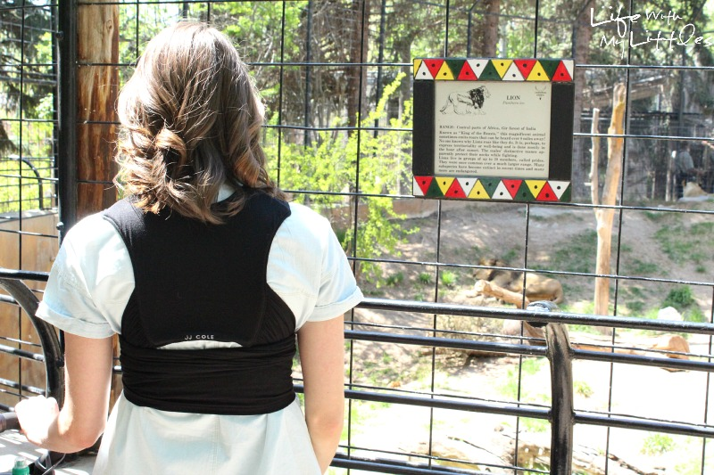 How to enjoy a day at the zoo. Tips on what to bring to the zoo with little kids to make it the best, featuring #JJColeStyle!