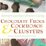Homemade Harry Potter Candy: Chocolate Frogs and Cockroach Clusters