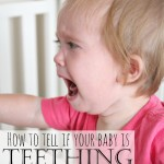 How to Tell if Your Baby is Teething (& Tips to Make it Through!)