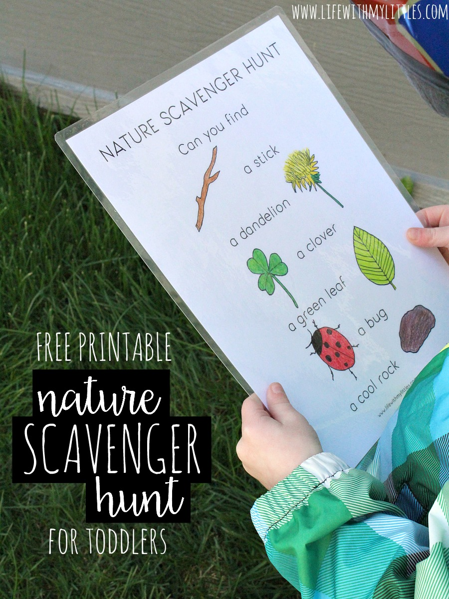 nature scavenger hunt for toddlers life with my littles