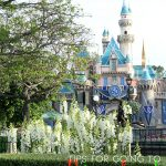 28 Tips for Going to Disneyland with Toddlers