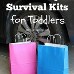 Road Trip Survival Kit for Toddlers