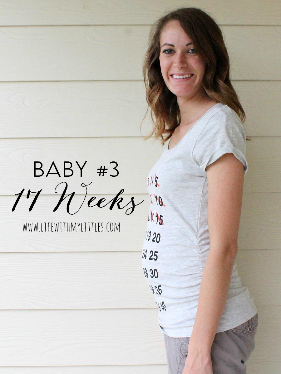 Baby #3 Pregnancy Update: 17 Weeks