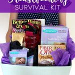 Breastfeeding Survival Kit