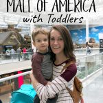 Things to Do at the Mall of America with Toddlers