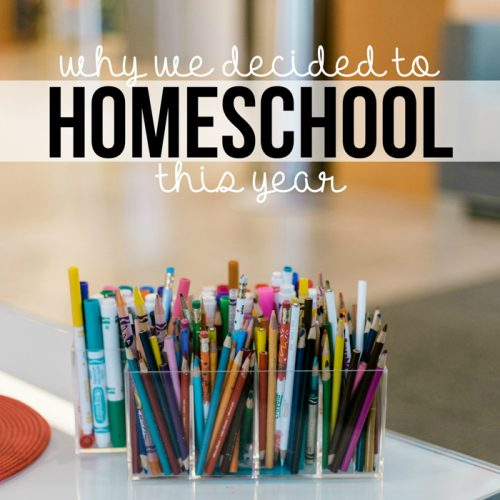 Deciding what to do about school this year has been a tough choice that many parents have struggled with. Here's why we decided to homeschool this year.