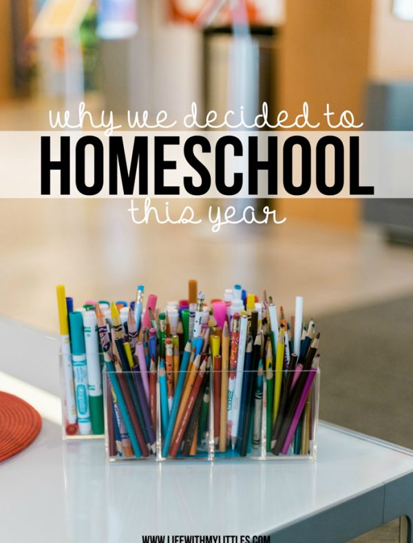 Why We Decided to Homeschool This Year